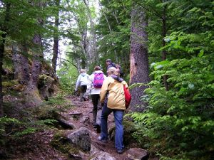 Physical-activity-group-hiking